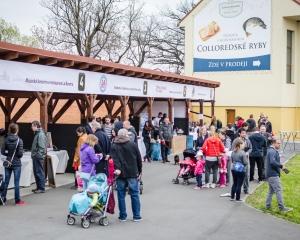 Rybí festival 2016
